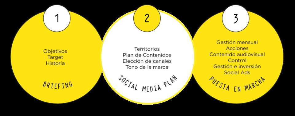 Agencia Redes Sociales en Granada y Málaga | Limón Publicidad